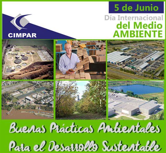 5 de Junio Día del Medio Ambiente