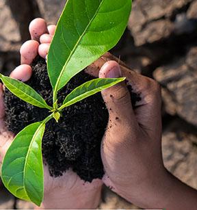 Curso sobre Riesgo Ambiental